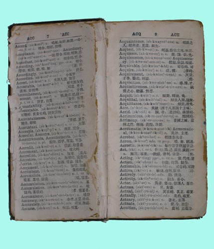Chinese_Dictionary_right_size_image.jpg